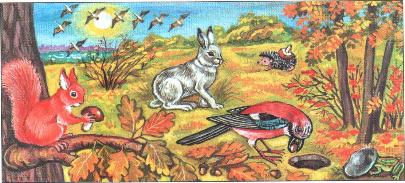 Осень в лесу картинки для детей в детском, цветы